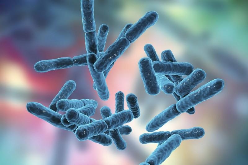 Ağiz Ve Diş Sağlığı İçinProbiyotikler
